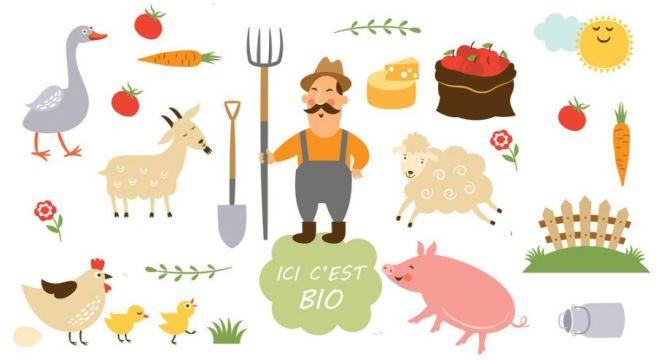 32324-agriculteurs_francais_conversion_massivement_au_bio