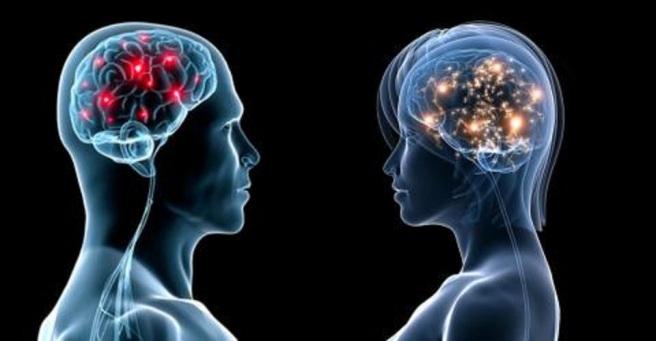 cerveau-masculin-et-feminin_09d32f1ef56bd92edbecc04f7fd30bc9f543da34